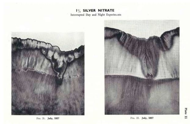 silver-nitrate-1