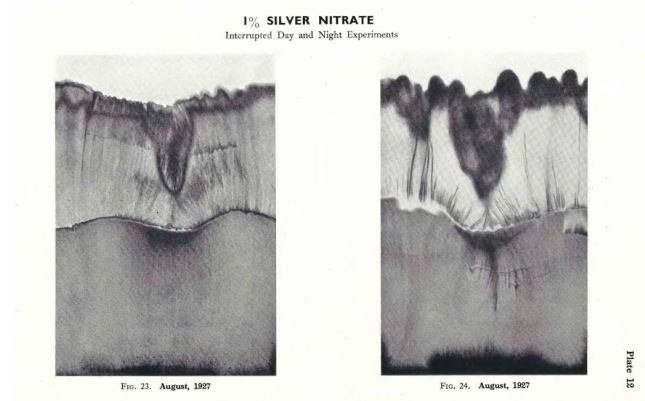silver-nitrate-2